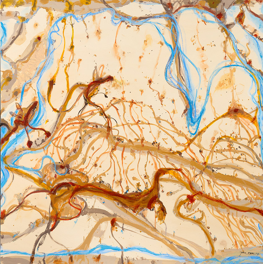 Journey into Murrumbidgee Country by John Olsen